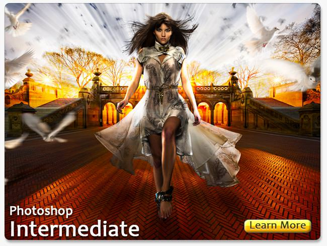 Adobe Photoshop Intermediate ClassÉ Learn More
