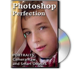 Photoshop Perfection - Emergency Retouching Basics Class
