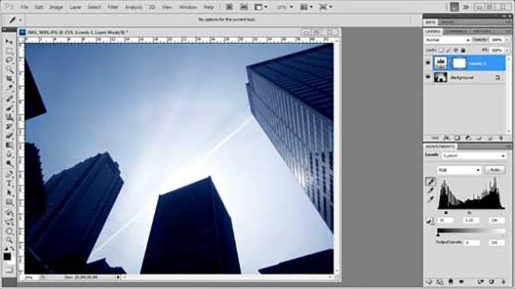 Levels | Photoshop Basic Tutorial