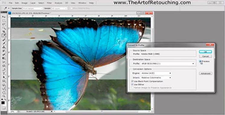 Color Spaces & Color Profiles – RGB, CMYK, sRGB, Adobe RGB, ProPhoto