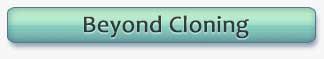 Adobe Photoshop Basic Two Class - Beyond Cloning